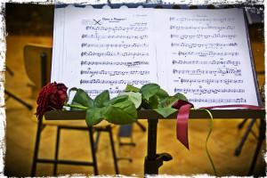 Orkester harf - Glasbena šola Celje